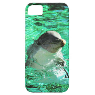 Dolphin! Case For The iPhone 5