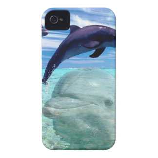 Dolphin Case-Mate iPhone 4 Case