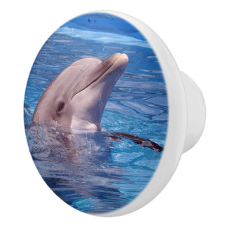 dolphin ceramic knob