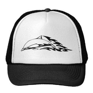 Dolphin designs cap
