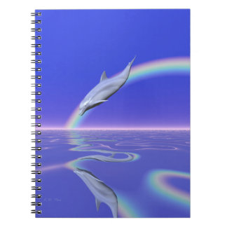 Dolphin Download Notebooks