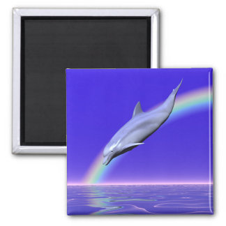 Dolphin Download Square Magnet