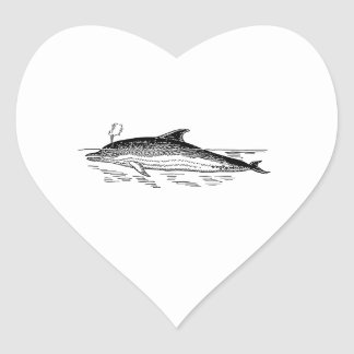 Dolphin Drawing Heart Stickers