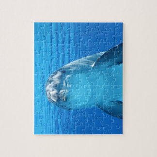 Dolphin face up close jigsaw puzzle