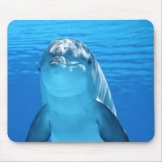 Dolphin face up close mouse mat