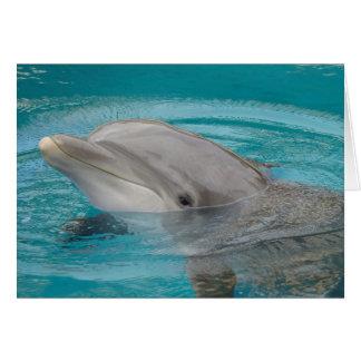 Dolphin Friend Hello Greeting Card