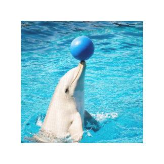 Dolphin having a ball gallery wrap canvas