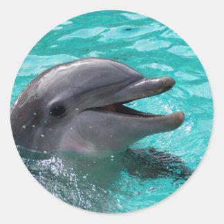Dolphin head in aquamarine water round sticker