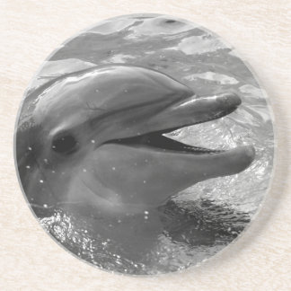 Dolphin head in water mouth open Black and White Coaster