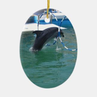 Dolphin Hoop Ceramic Oval Decoration