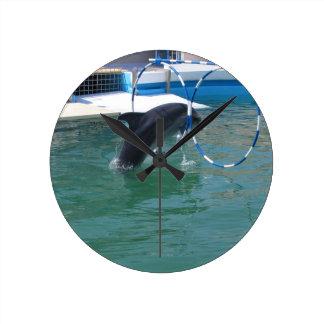 Dolphin Hoop Clocks