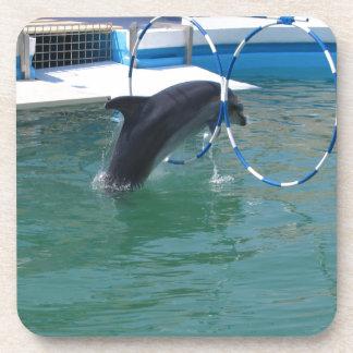 Dolphin Hoop Coaster