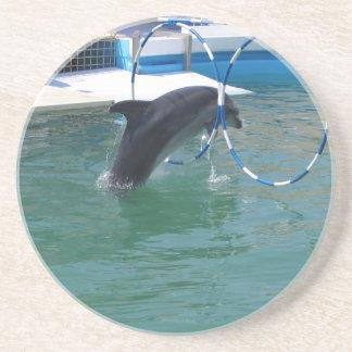Dolphin Hoop Drink Coasters