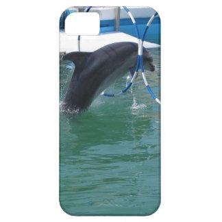 Dolphin Hoop iPhone 5 Cases
