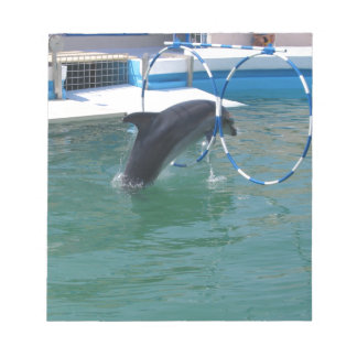 Dolphin Hoop Note Pads