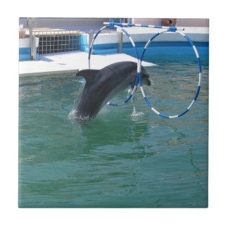 Dolphin Hoop Small Square Tile