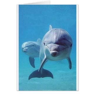 dolphin II Greeting Card