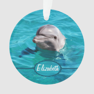 Dolphin in Blue Water Photo Ornament