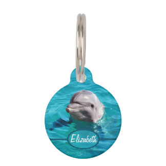 Dolphin in Blue Water Photo Pet Tag