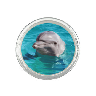 Dolphin in Blue Water Photo Rings