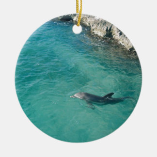 Dolphin in Mexico Christmas Ornament
