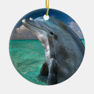 Dolphin in the Bahamas Round Ceramic Decoration