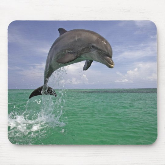 Dolphin in the wild Jumping Mouse Mat