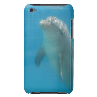 Dolphin ipad touch over iPod touch case