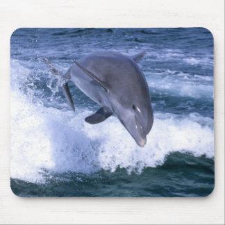 Dolphin jumping, Grand Bahama, Bahamas Mouse Mat
