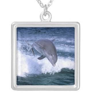 Dolphin jumping, Grand Bahama, Bahamas Silver Plated Necklace