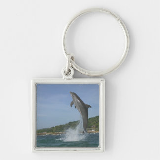Dolphin jumping, Roatan, Bay Islands, Honduras Key Ring