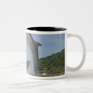 Dolphin jumping, Roatan, Bay Islands, Honduras Two-Tone Coffee Mug