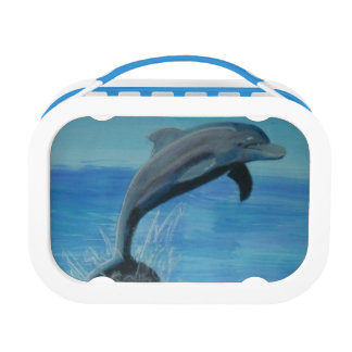dolphin lunch box