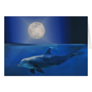 Dolphin Moon and Universe Birthday Card