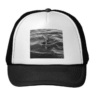 Dolphin Mother and Baby Trucker Hat