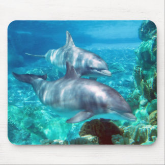 Dolphin Mousepad