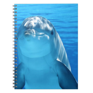 Dolphin Notebooks