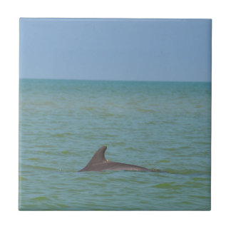 Dolphin on Sanibel Small Square Tile