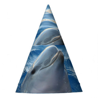 Dolphin Party Hat