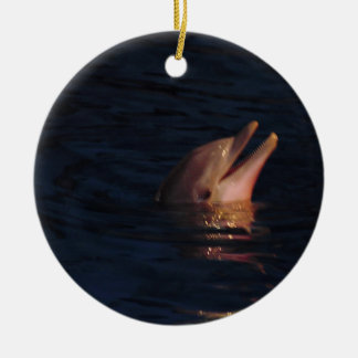Dolphin Photo Christmas Ornament