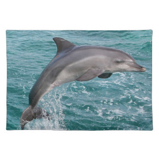 DOLPHIN PLACE MAT