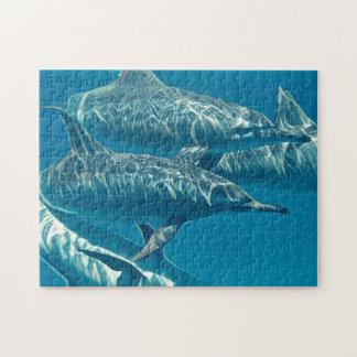 Dolphin Pod Jigsaw Puzzle