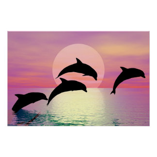 Dolphin Silhouette Poster