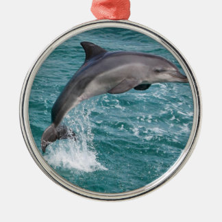 DOLPHIN Silver-Colored ROUND DECORATION