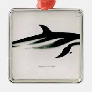 Dolphin Silver-Colored Square Decoration