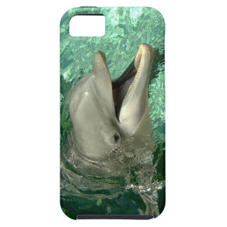 Dolphin Smile iPhone 5 Cases