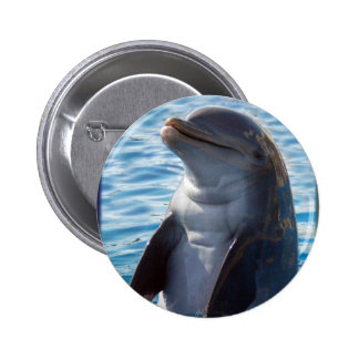 dolphin stand 6 cm round badge