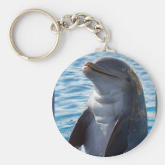 dolphin stand basic round button key ring