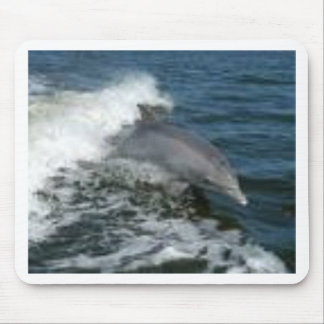 Dolphin Surfing Mouse Pad