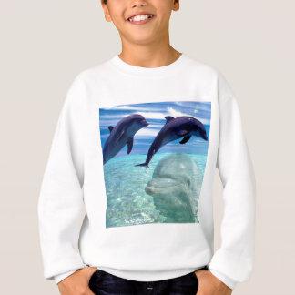 Dolphin Sweatshirt